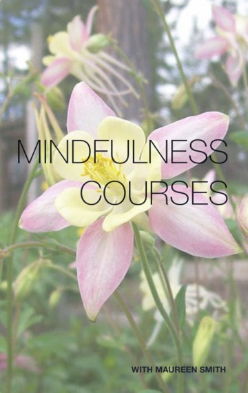 Mindfulness MBSR Courses